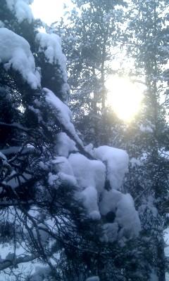 Talvine vaade aknast
